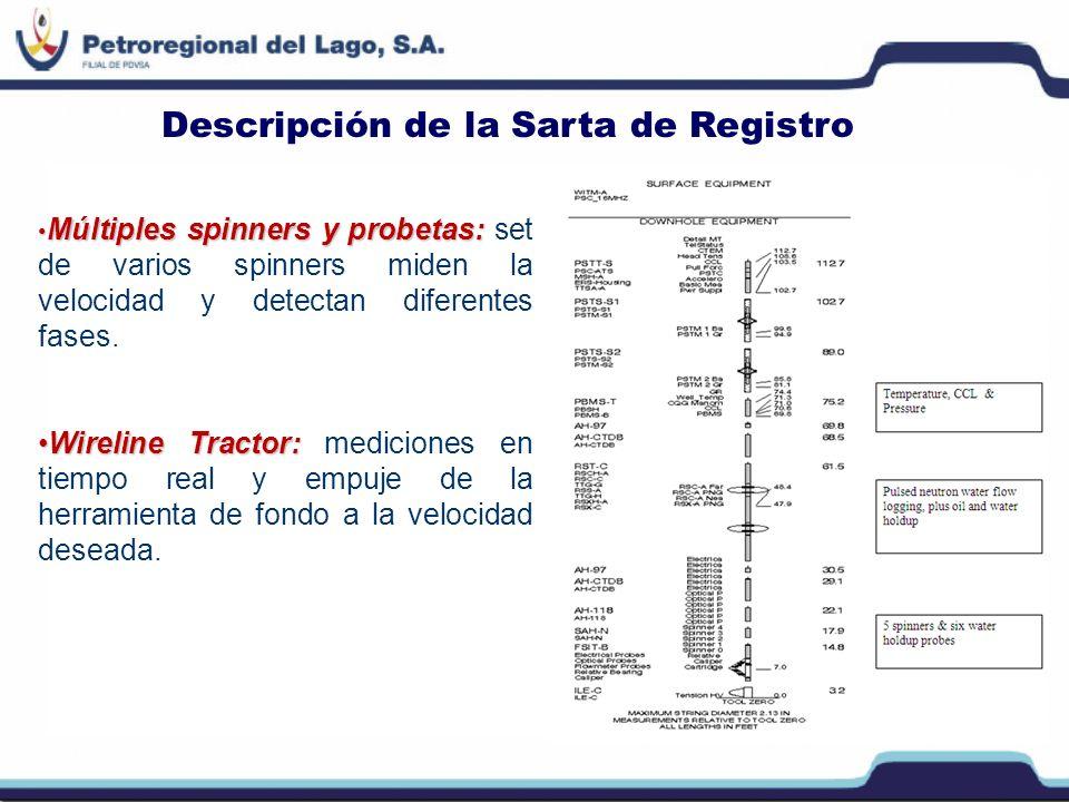 Interpretación de los Resultados Pozo horizontal productor de agua/crudo: régimen de flujo estratificado.