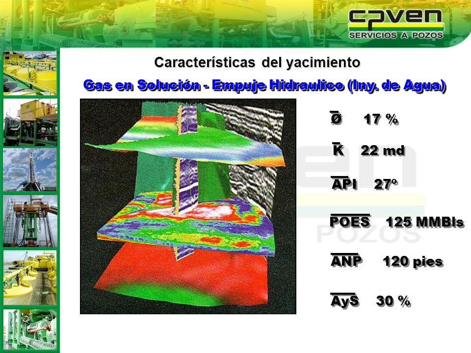 Características del yacimiento Gas en Solución - Empuje Hidraulico (Iny. de Agua) Ø 17 % K 22 md API 27º POES 125 MMBls ANP 120 pies AyS 30 %