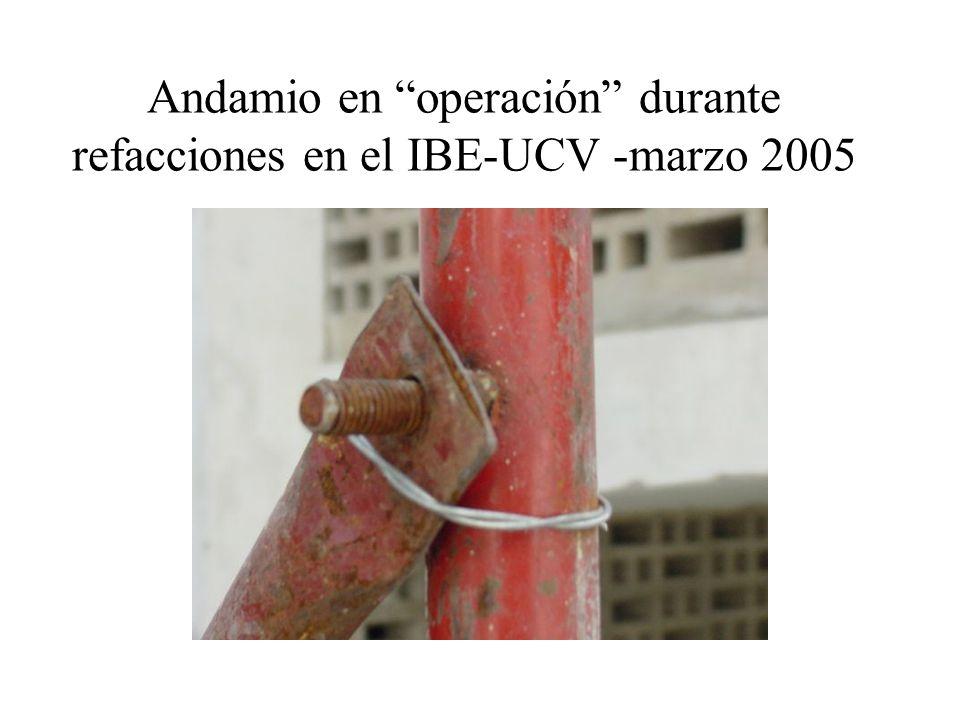 Andamio en operación durante refacciones en el IBE-UCV -marzo 2005