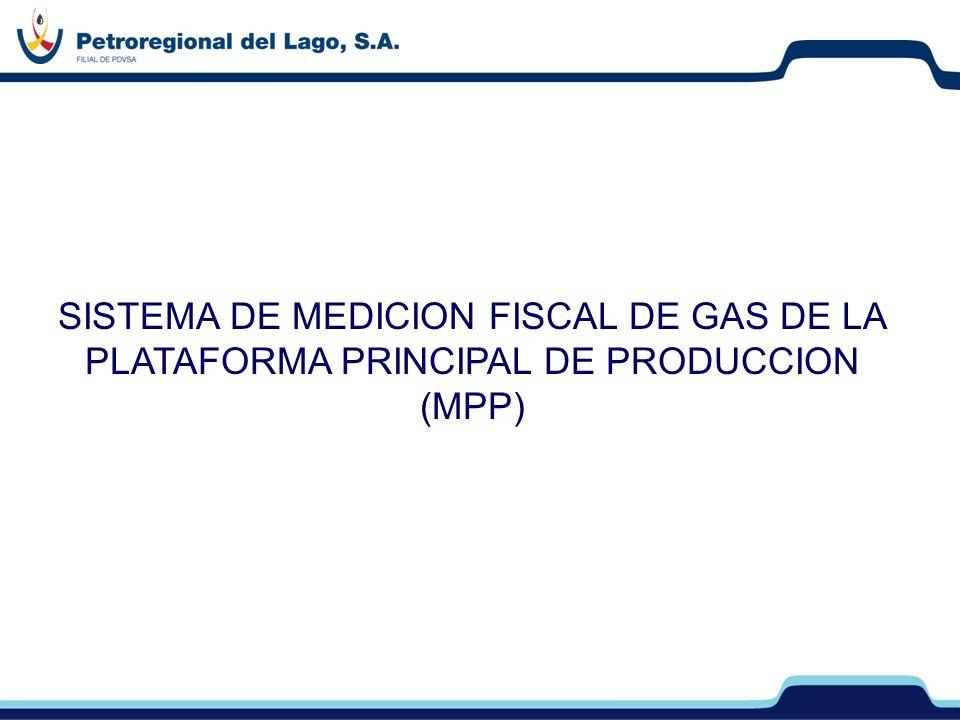 SISTEMA DE MEDICION FISCAL DE GAS DE LA PLATAFORMA PRINCIPAL DE PRODUCCION (MPP)