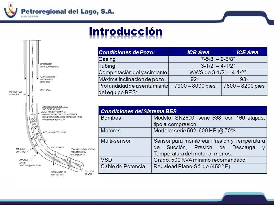 Condiciones de Pozo:ICB áreaICE área Casing7-5/8 – 9-5/8 Tubing3-1/2 – 4-1/2 Completación del yacimiento:WWS de 3-1/2 – 4-1/2 Máxima inclinación de po