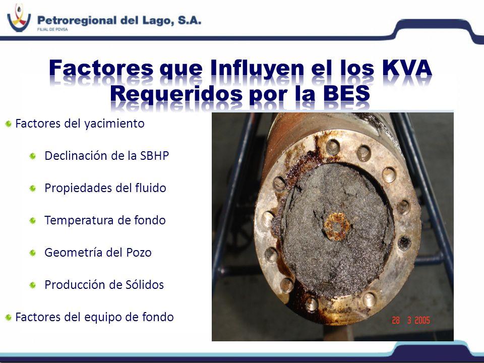 Factores del yacimiento Declinación de la SBHP Propiedades del fluido Temperatura de fondo Geometría del Pozo Producción de Sólidos Factores del equip