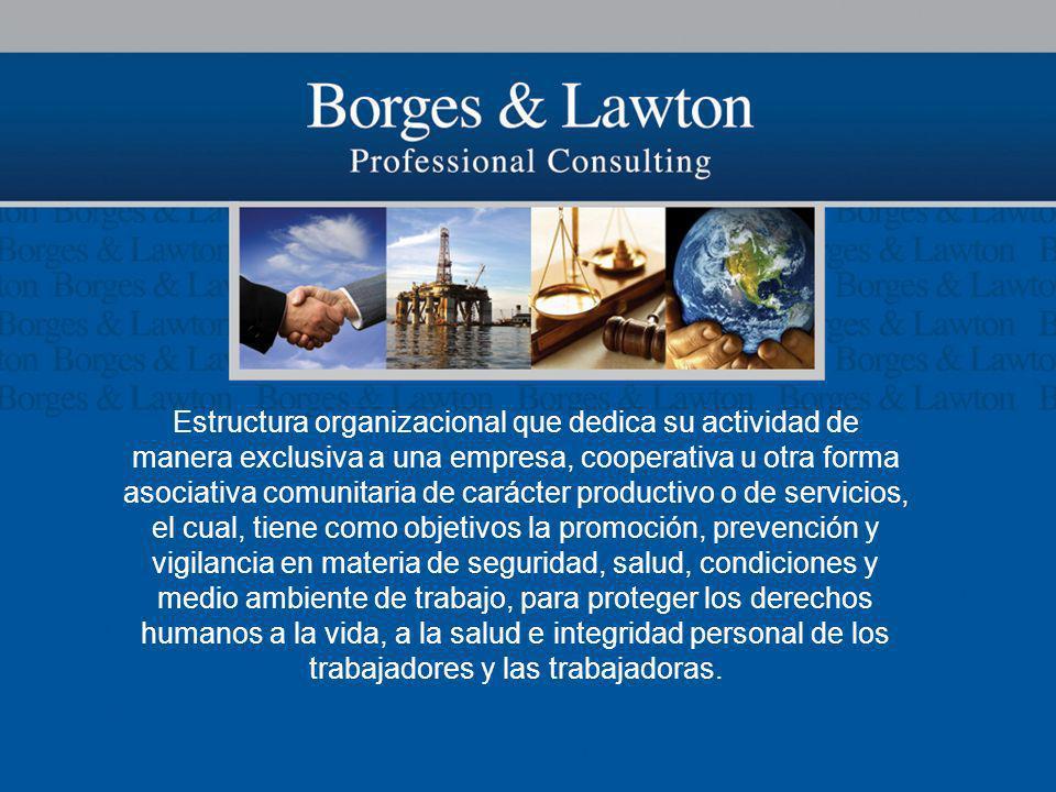 Estructura organizacional que dedica su actividad de manera exclusiva a una empresa, cooperativa u otra forma asociativa comunitaria de carácter produ
