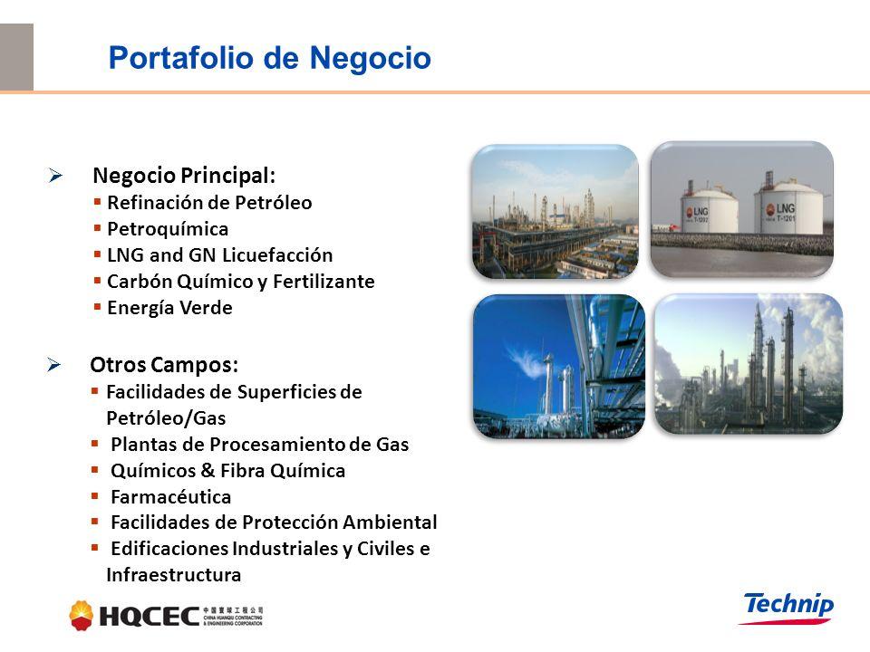 Negocio Principal: Refinación de Petróleo Petroquímica LNG and GN Licuefacción Carbón Químico y Fertilizante Energía Verde Otros Campos: Facilidades de Superficies de Petróleo/Gas Plantas de Procesamiento de Gas Químicos & Fibra Química Farmacéutica Facilidades de Protección Ambiental Edificaciones Industriales y Civiles e Infraestructura Portafolio de Negocio