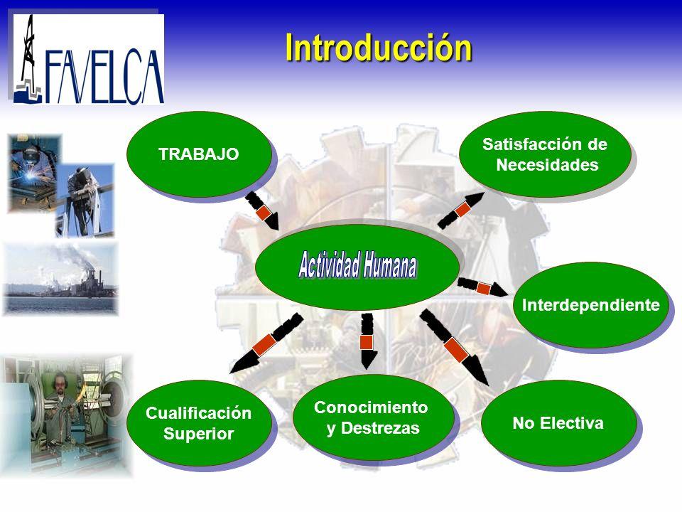 Introducción Cualificación Superior Cualificación Superior Satisfacción de Necesidades Satisfacción de Necesidades Interdependiente No Electiva Conoci
