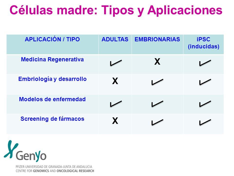 Células madre: Tipos y Aplicaciones APLICACIÓN / TIPOADULTASEMBRIONARIASiPSC (inducidas) Medicina Regenerativa X Embriología y desarrollo X Modelos de