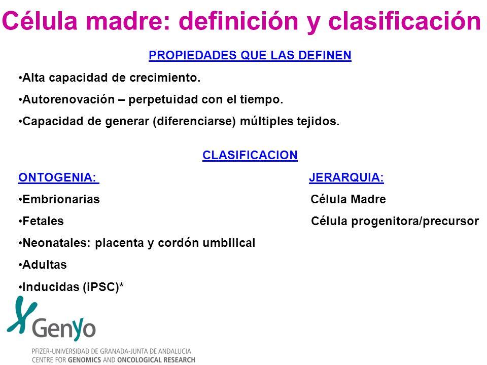 Célula madre: definición y clasificación PROPIEDADES QUE LAS DEFINEN Alta capacidad de crecimiento. Autorenovación – perpetuidad con el tiempo. Capaci