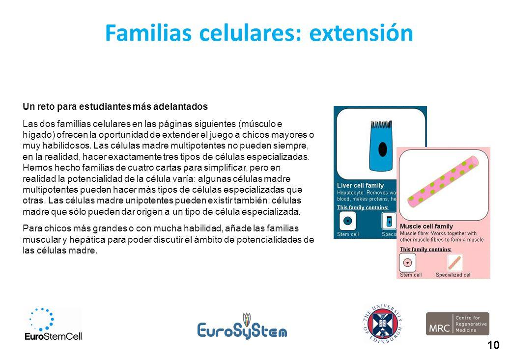 Familias celulares: extensión Un reto para estudiantes más adelantados Las dos famillias celulares en las páginas siguientes (músculo e hígado) ofrece