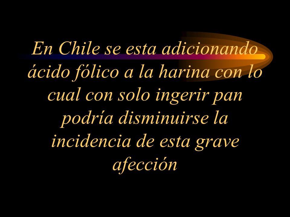 En Chile se esta adicionando ácido fólico a la harina con lo cual con solo ingerir pan podría disminuirse la incidencia de esta grave afección