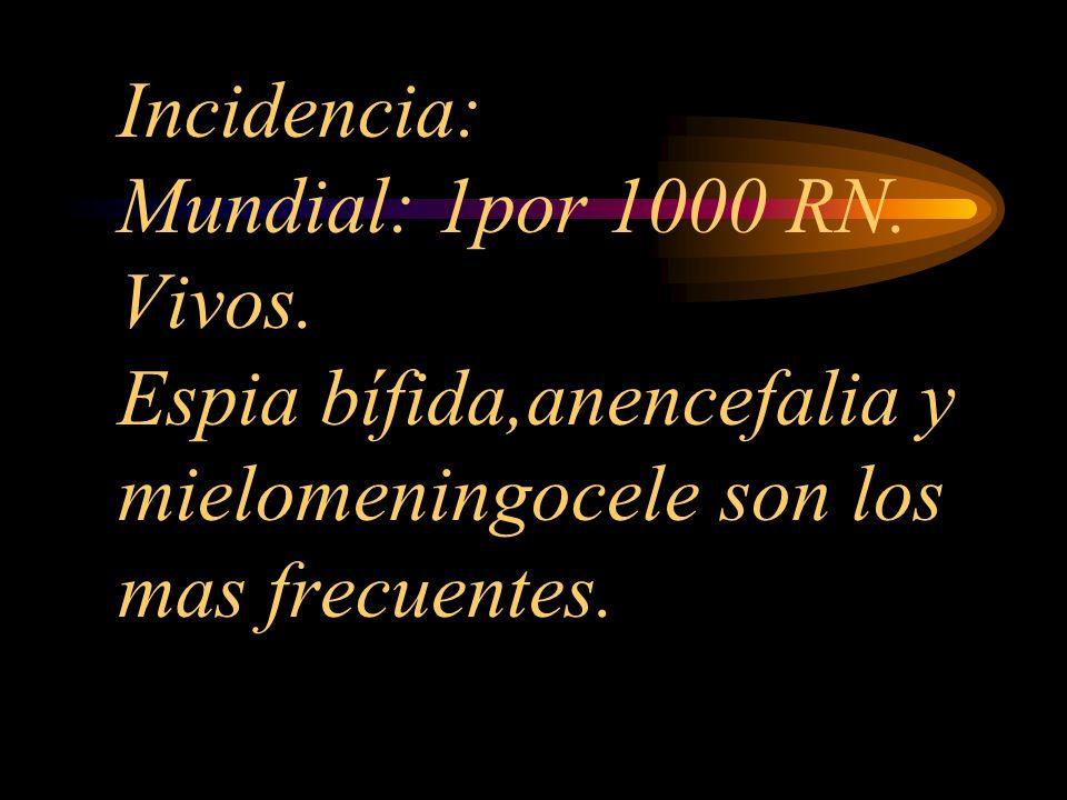 Incidencia: Mundial: 1por 1000 RN. Vivos. Espia bífida,anencefalia y mielomeningocele son los mas frecuentes.