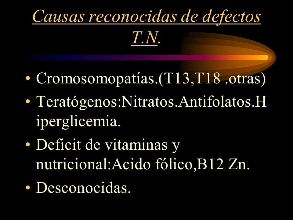 Causas reconocidas de defectos T.N. Cromosomopatías.(T13,T18.otras) Teratógenos:Nitratos.Antifolatos.H iperglicemia. Deficit de vitaminas y nutriciona