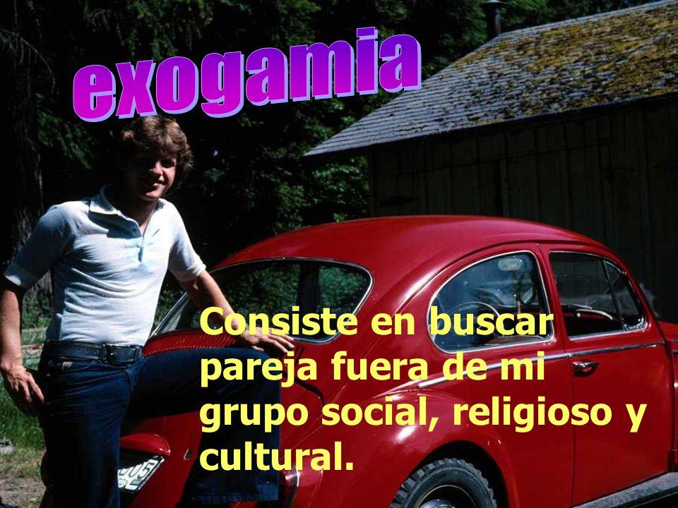 Consiste en buscar pareja, dentro de mi grupo social, religioso y cultural.