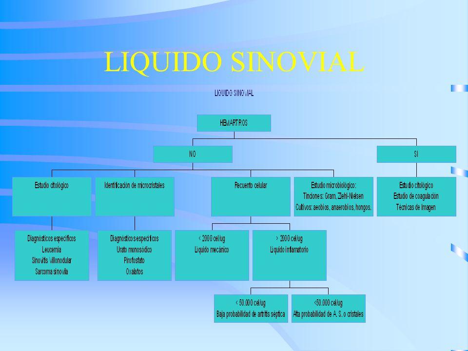 LIQUIDO SINOVIAL