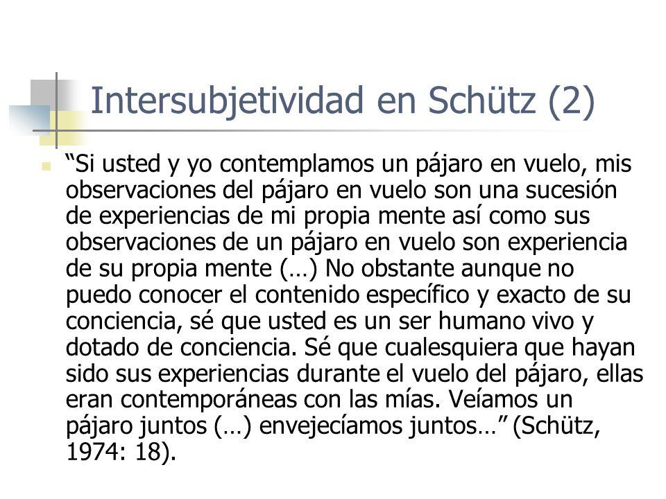 Intersubjetividad en Schütz (2) Si usted y yo contemplamos un pájaro en vuelo, mis observaciones del pájaro en vuelo son una sucesión de experiencias