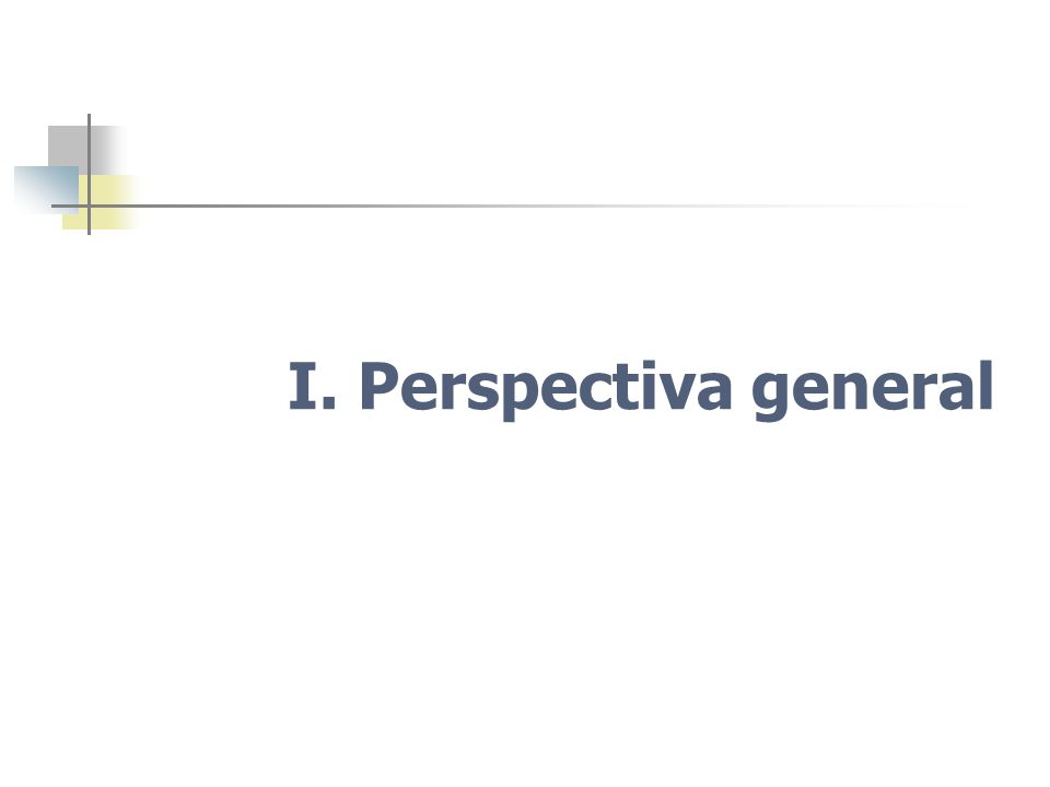 I. Perspectiva general