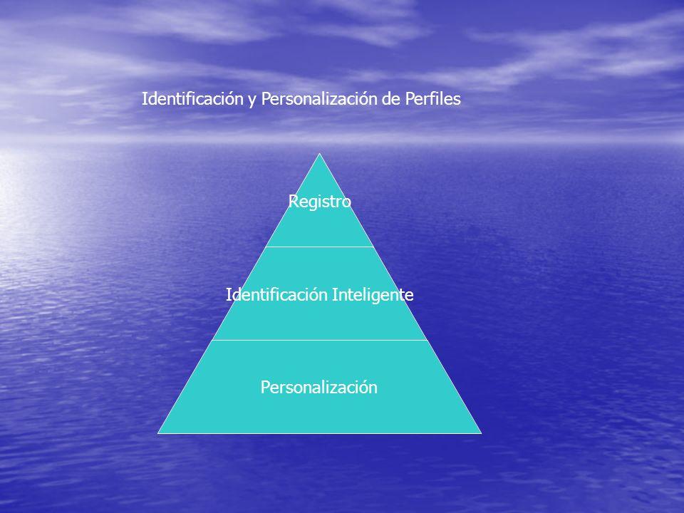 Identificación y Personalización de Perfiles Registro Identificación Inteligente Personalización