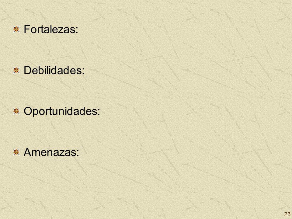 23 Fortalezas: Debilidades: Oportunidades: Amenazas: