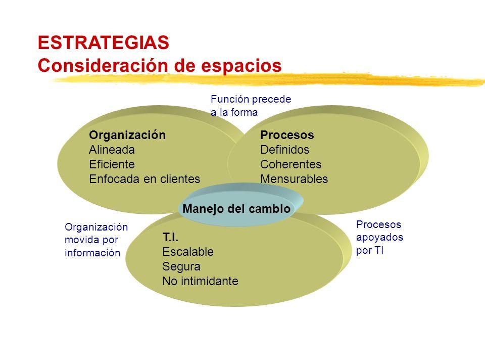T.I. Escalable Segura No intimidante Organización Alineada Eficiente Enfocada en clientes Procesos Definidos Coherentes Mensurables ESTRATEGIAS Consid