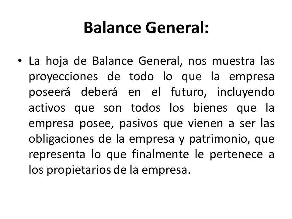 Balance General: La hoja de Balance General, nos muestra las proyecciones de todo lo que la empresa poseerá deberá en el futuro, incluyendo activos qu