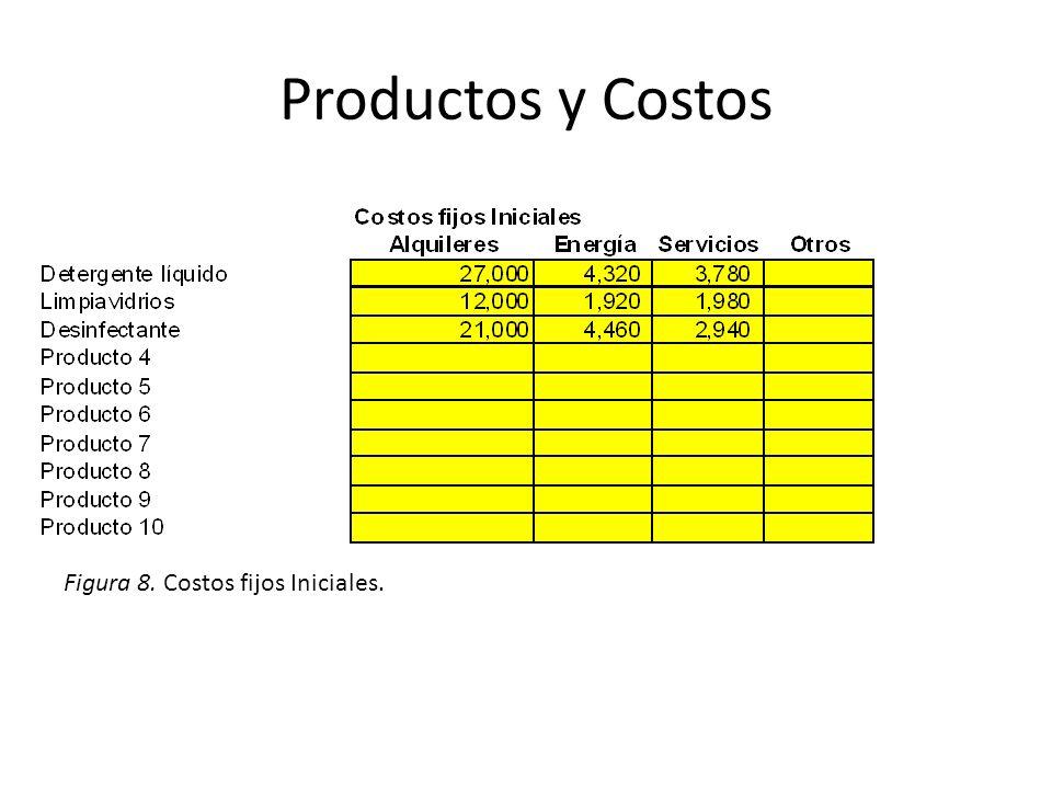 Productos y Costos Figura 8. Costos fijos Iniciales.