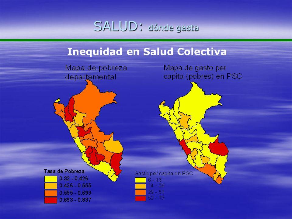 SALUD: dónde gasta Inequidad en Salud Colectiva