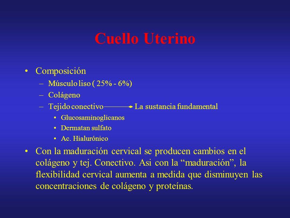 Maduración cervical 1.- Destrucción del colágeno 2.- Alteración de las cantidades relativas de los diversos glucosaminoglicanos –Casi a término hay un importante aumento del ac.