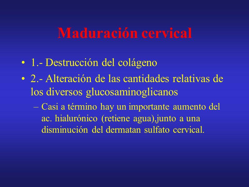 Factores reguladores de la Contracción y maduración cervical Las prostaglandinas (-) el secuestro de calcio al reticulo sarcoplasmico aumentando al concentración citosólica de calcio.