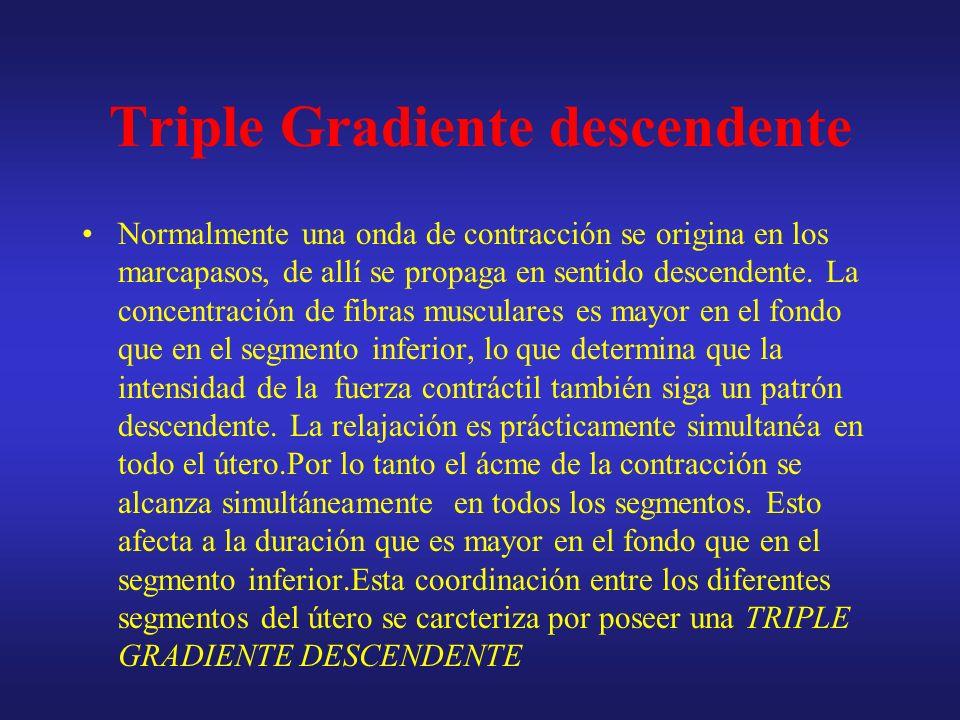 Triple gradiente descendente Origen. Propagación descendente Intensidad Duración