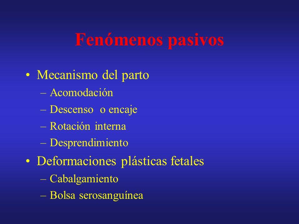 Cuello uterino Primipara Multipara