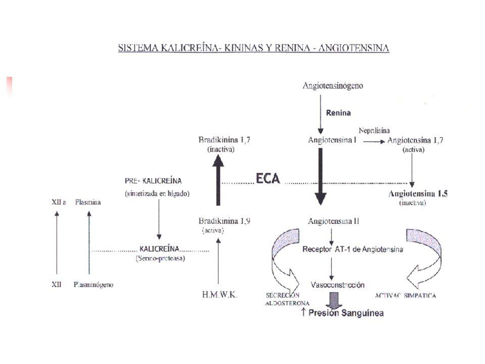 TerapiaCon IECA DrogaInicioMáximo Benazepril*10 mg c/ 24 h40 mg c/12 h Captopril12,5 mg c/24 h50 mg c/8 h Enalapril2,5 mg c/24 h20 mg c/12h Fosinopril*10 mg c/24 h20 mg c/ 12h Lisinopril5 mg c/24 h40 mg C/ 24 h Moexipril*7,5 mg c/24 h15 mg c/ 12 h Perindopril4 mg c/ 24 h4 mg c/12 h Quinapril*5 mg c/ 24 h40 mg C/ 12 h Ramipril*1,25 mg c/24 h10 mg c/12 h Trandolapril*1 mg C/ 24 h4 mg c/ 24 h