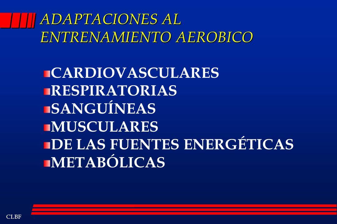 CLBF ADAPTACIONES AL ENTRENAMIENTO AEROBICO CARDIOVASCULARES RESPIRATORIAS SANGUÍNEAS MUSCULARES DE LAS FUENTES ENERGÉTICAS METABÓLICAS