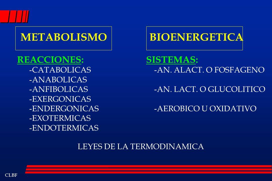 CLBF METABOLISMO BIOENERGETICA REACCIONES: -CATABOLICAS -ANABOLICAS -ANFIBOLICAS -EXERGONICAS -ENDERGONICAS -EXOTERMICAS -ENDOTERMICAS SISTEMAS: -AN.