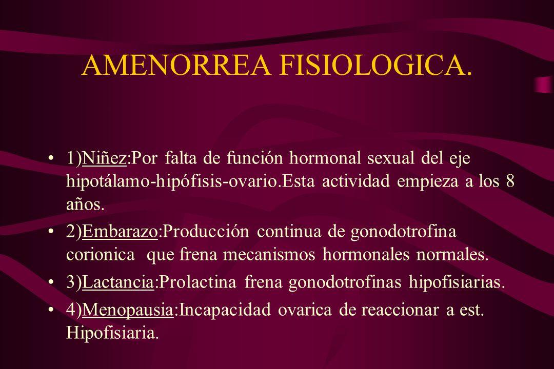 AMENORREA FISIOLOGICA. 1)Niñez:Por falta de función hormonal sexual del eje hipotálamo-hipófisis-ovario.Esta actividad empieza a los 8 años. 2)Embaraz