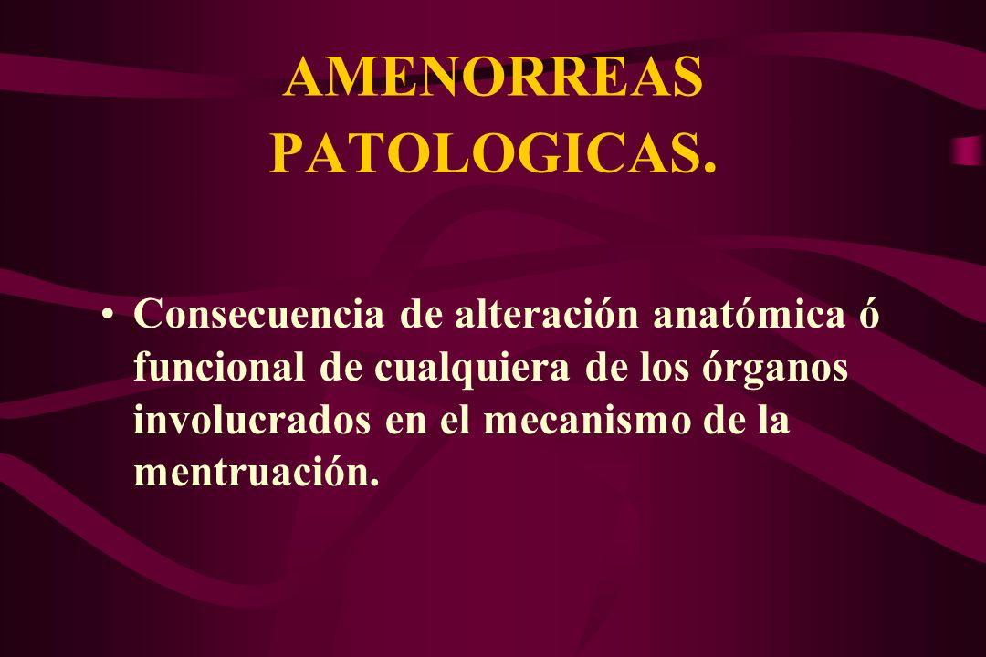 AMENORREAS PATOLOGICAS. Consecuencia de alteración anatómica ó funcional de cualquiera de los órganos involucrados en el mecanismo de la mentruación.