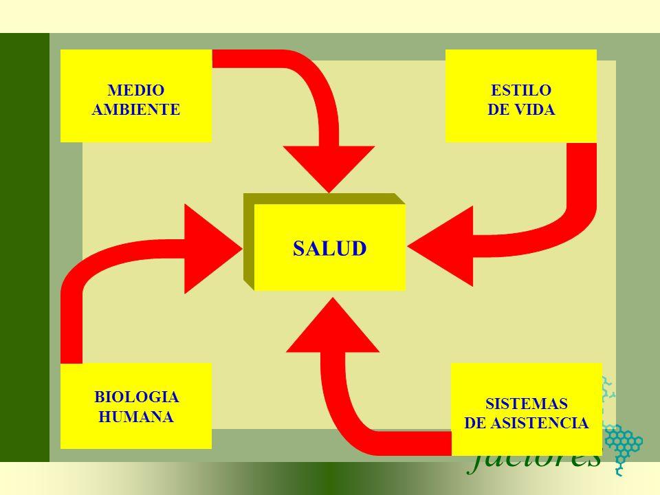 factores SALUD MEDIO AMBIENTE ESTILO DE VIDA SISTEMAS DE ASISTENCIA BIOLOGIA HUMANA