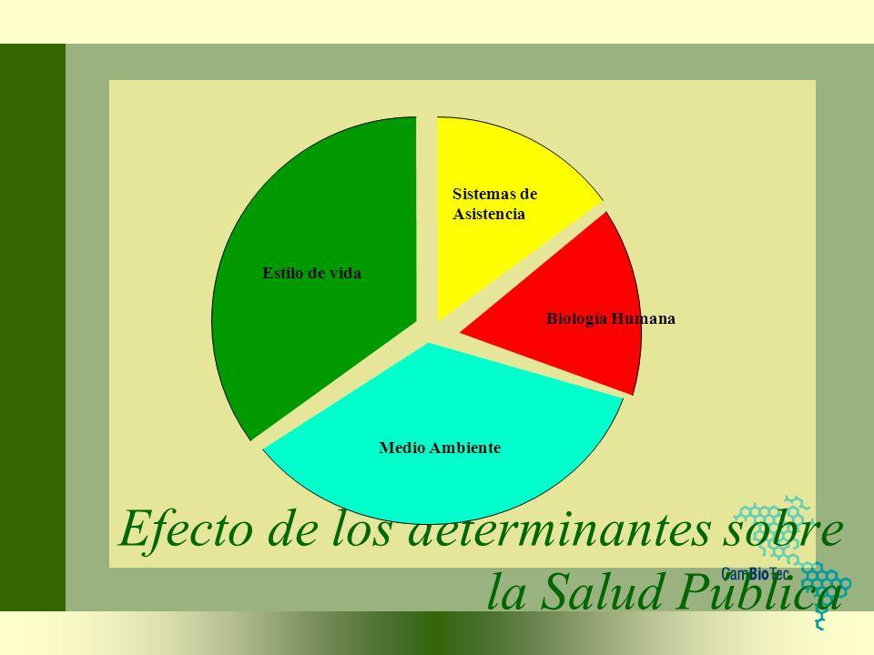 Efecto de los determinantes sobre la Salud Pública Sistemas de Asistencia Biología Humana Estilo de vida Medio Ambiente