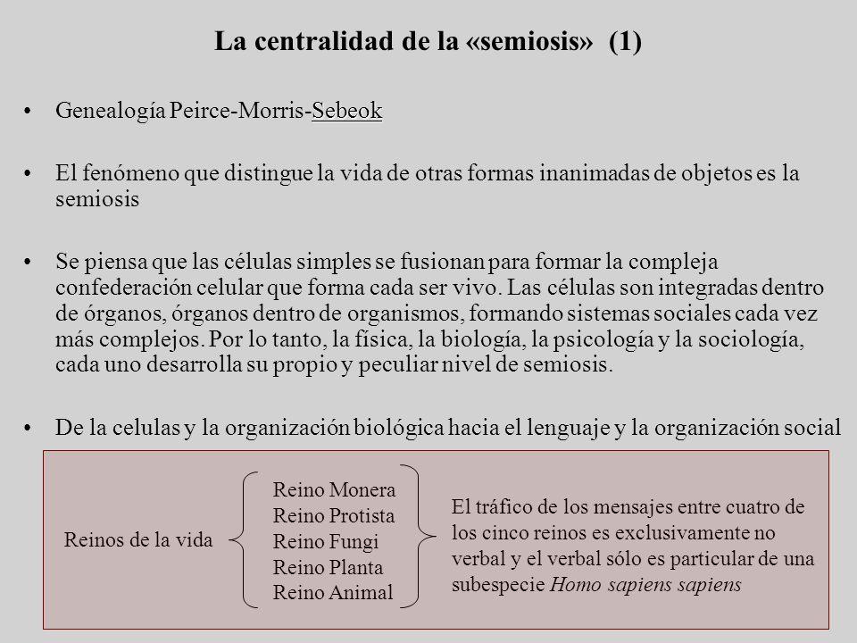 La centralidad de la «semiosis» (1) SebeokGenealogía Peirce-Morris-Sebeok El fenómeno que distingue la vida de otras formas inanimadas de objetos es l