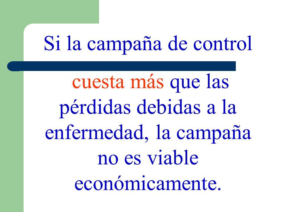 Si la campaña de control cuesta más que las pérdidas debidas a la enfermedad, la campaña no es viable económicamente.