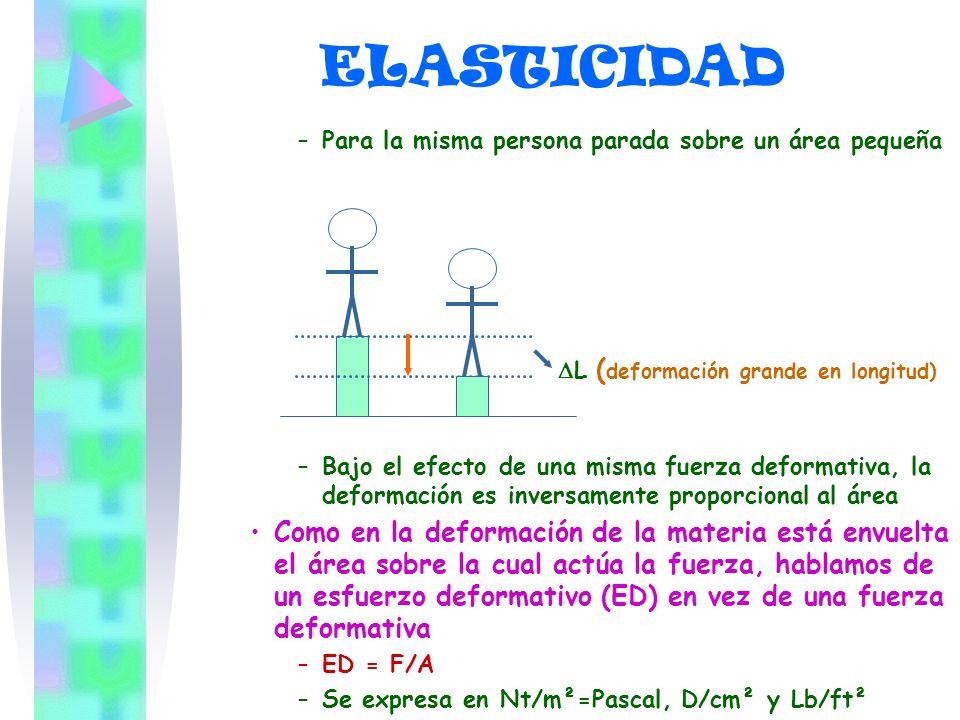 –P–Para la misma persona parada sobre un área pequeña L ( deformación grande en longitud) –B–Bajo el efecto de una misma fuerza deformativa, la deform