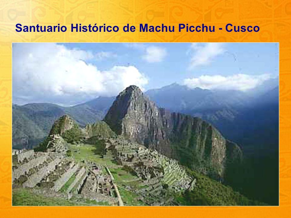 25 Santuario Histórico de Machu Picchu - Cusco