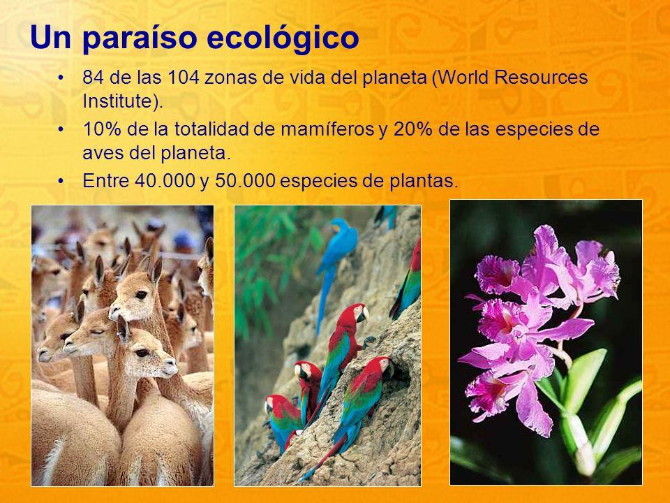 7 Un paraíso ecológico 84 de las 104 zonas de vida del planeta (World Resources Institute). 10% de la totalidad de mamíferos y 20% de las especies de