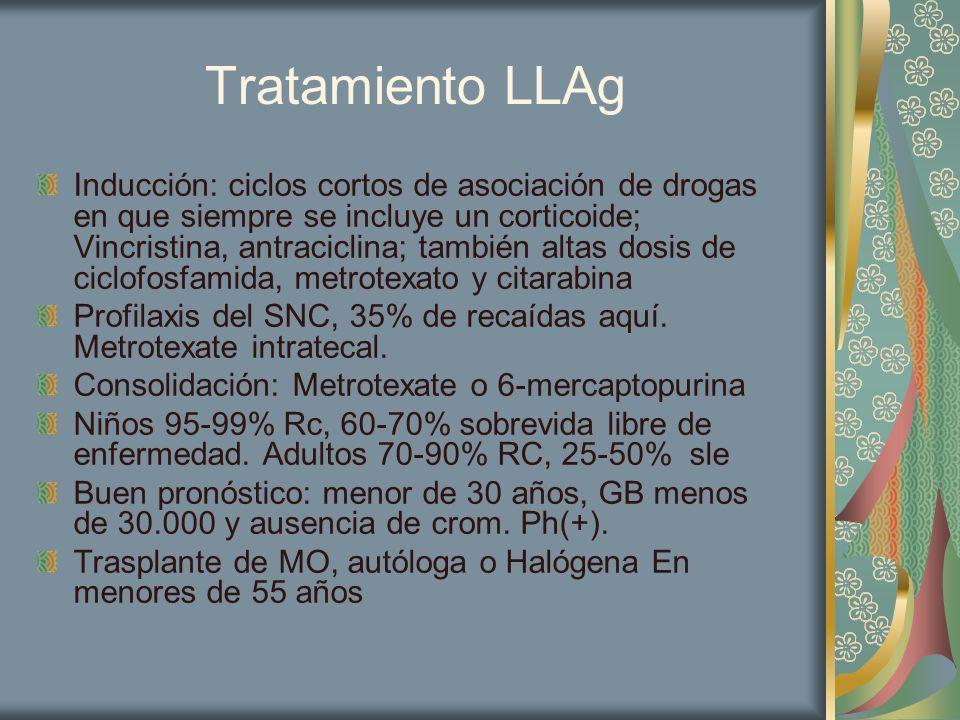 Tratamiento LLAg Inducción: ciclos cortos de asociación de drogas en que siempre se incluye un corticoide; Vincristina, antraciclina; también altas do