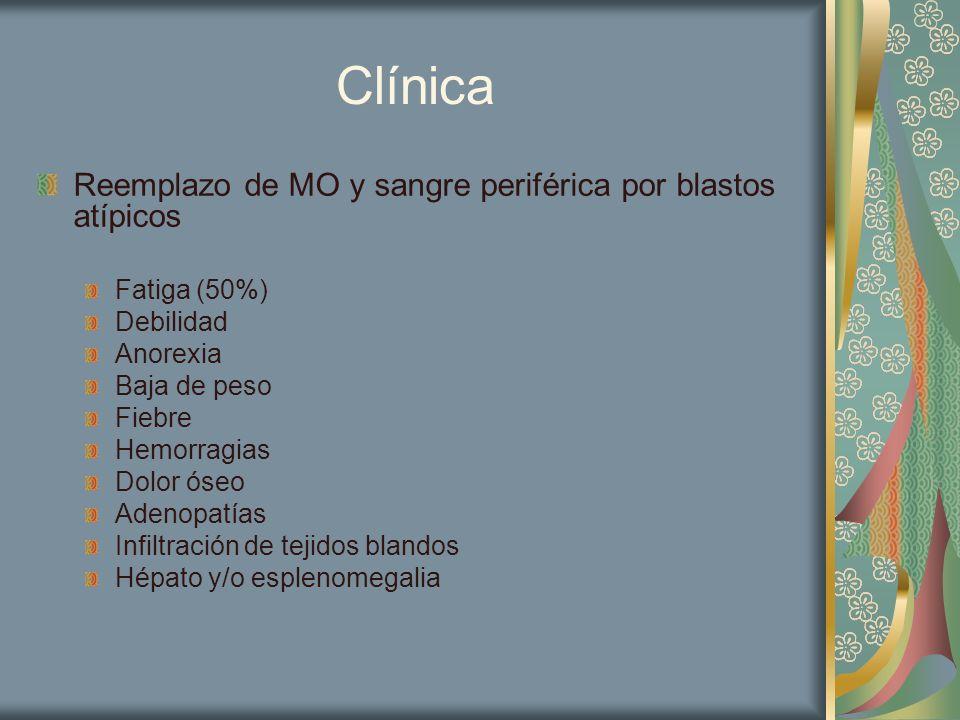 Clínica Reemplazo de MO y sangre periférica por blastos atípicos Fatiga (50%) Debilidad Anorexia Baja de peso Fiebre Hemorragias Dolor óseo Adenopatía