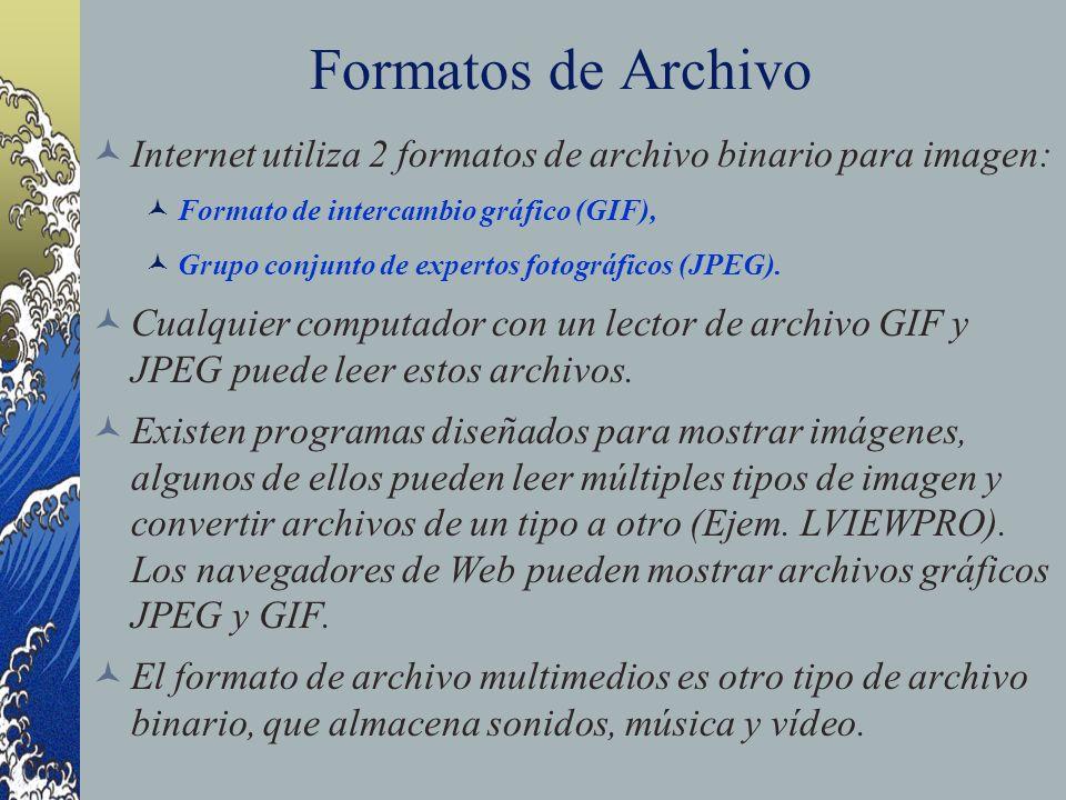 Formatos de Archivo Internet utiliza 2 formatos de archivo binario para imagen: Formato de intercambio gráfico (GIF), Grupo conjunto de expertos fotog