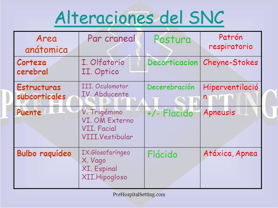 PreHospitalSetting.com Alteraciones del SNC Area anátomica Par craneal Postura Patrón respiratorio Corteza cerebral I. Olfatorio II. Optico Decorticac