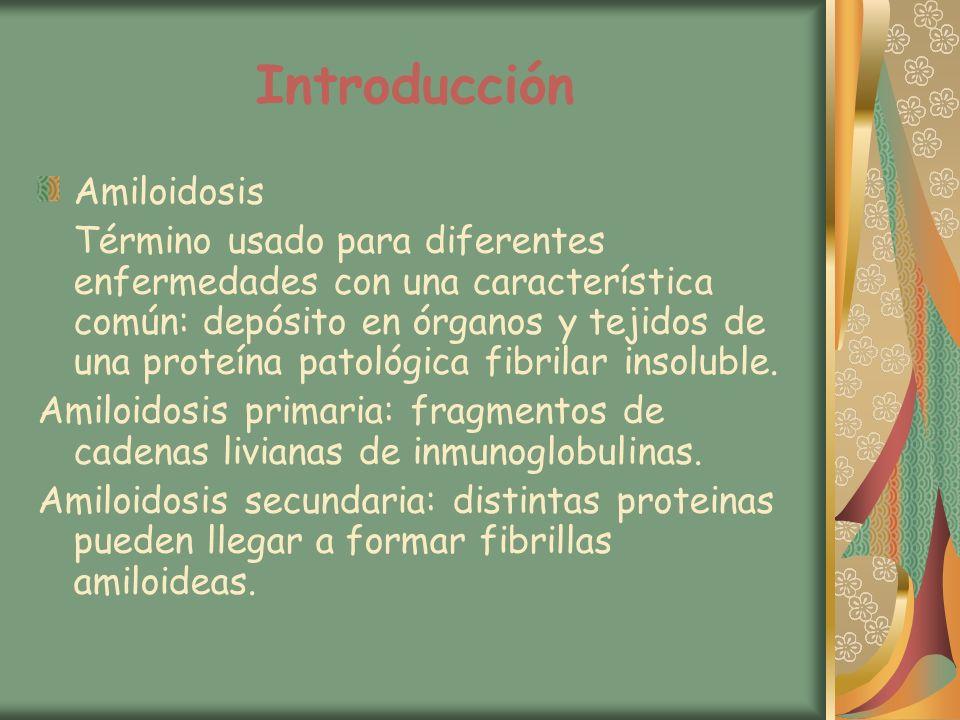Introducción Amiloidosis Término usado para diferentes enfermedades con una característica común: depósito en órganos y tejidos de una proteína patoló