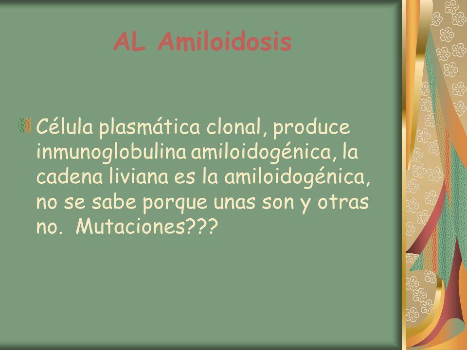 AL Amiloidosis Célula plasmática clonal, produce inmunoglobulina amiloidogénica, la cadena liviana es la amiloidogénica, no se sabe porque unas son y