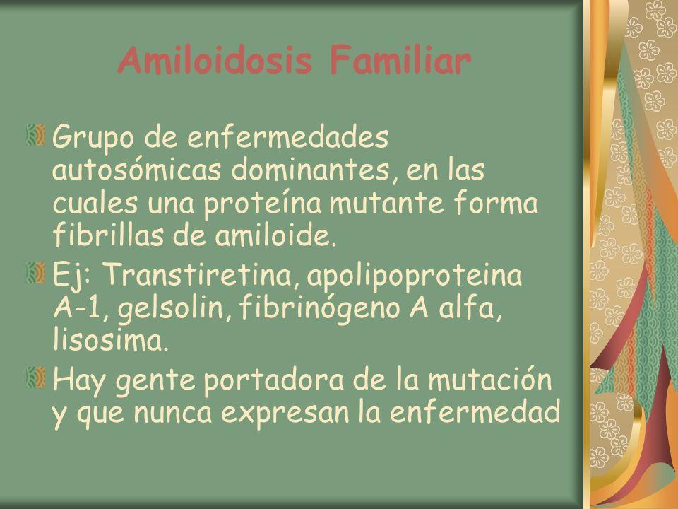 Amiloidosis Familiar Grupo de enfermedades autosómicas dominantes, en las cuales una proteína mutante forma fibrillas de amiloide. Ej: Transtiretina,