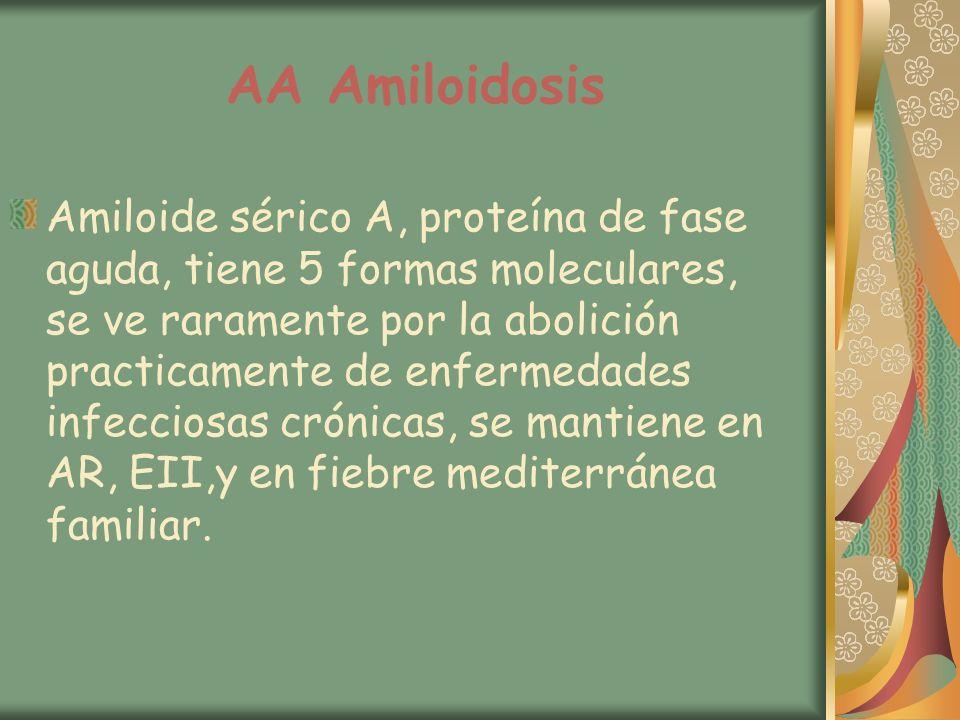 AA Amiloidosis Amiloide sérico A, proteína de fase aguda, tiene 5 formas moleculares, se ve raramente por la abolición practicamente de enfermedades i