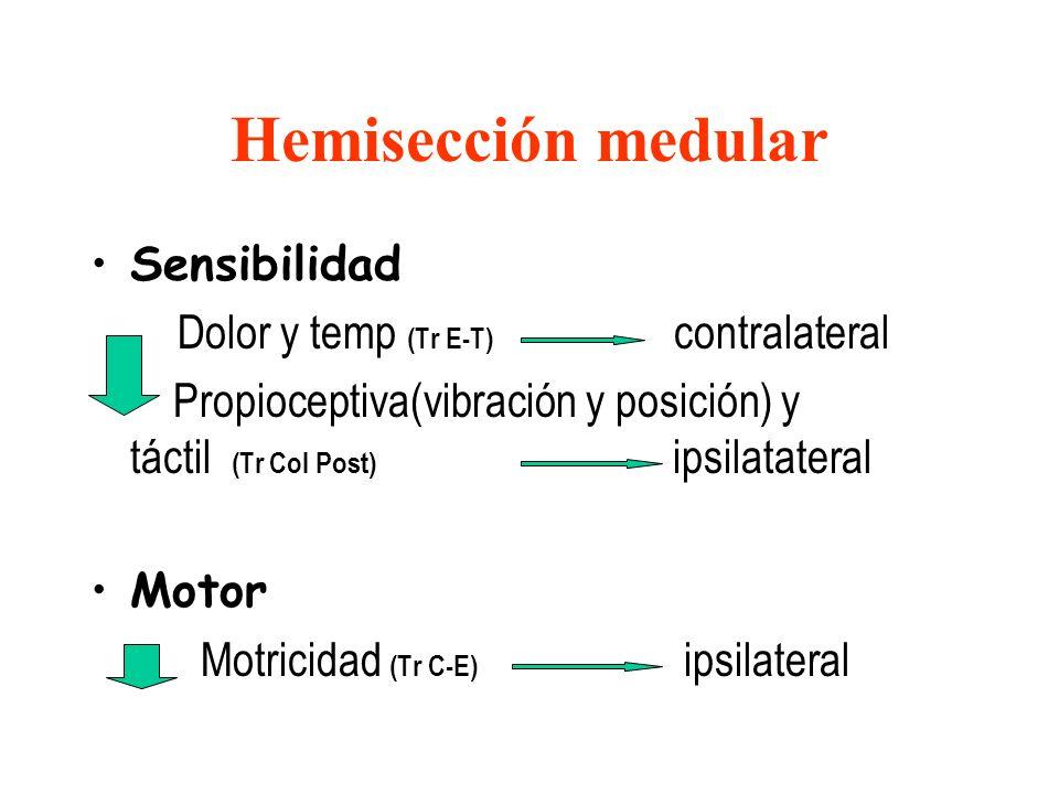 Hemisección medular Sensibilidad Dolor y temp (Tr E-T) contralateral Propioceptiva(vibración y posición) y táctil (Tr Col Post) ipsilatateral Motor Mo